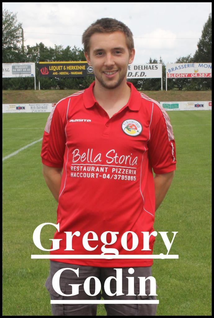 Greg Godin